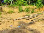Land For Sale Kadawatha