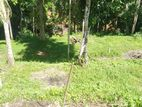 Land for Sale in Kandy - Gelioya
