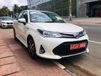 Easy Loan (85%) Toyota Axio /2019-Unregistered