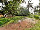 8.75P Bare Land For Sale in Thalawathugoda