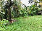 12P Land for Sale in Pannipitiya