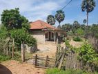 House with Land Sale Mannar