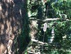 Land for sale in Haloluwa (Near Gatabe junction)