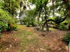 35P Land & Old House For Sale Makuluduwa