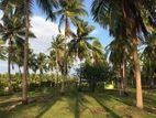 Land for Sale in Kalpitiya (C7-0561)
