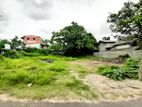 43P Commercial Bare Land For Rent in Makuluduwa