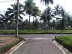 Badalgama Land for Sale