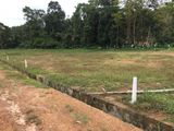 Residential Land Blocks for Sale in Horana