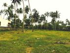 Beach Front Land for Sale in Wadduwa