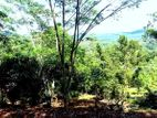 Hilltop Land for Sale Close Ingiriya