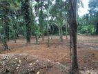 Land for sale in Rathnapura