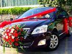 Premio Wedding Car for Hire