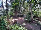 10P Residential Bare Land For Sale in Walgama