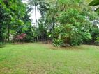 Bare Land for Sale in Nawala [LS45]