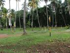 Land for Sale in Delgoda Town