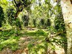15P Residential Land For Sale in Kottawa