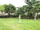 14 P and Property for Sale at Madiwela, Kotte