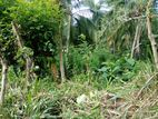 Land for Sale in Balangoda Depalamulla