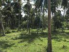 Coconut Land with A on Going 2 Bhk House Narammala