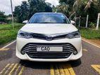 """Toyota Axio G-Grade, """"New Shell"""" 2015"""