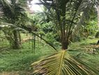 Land for Sale in Mahabage Wattala