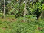 Land for Sale Boralesgamuwa