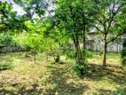 19.61 P Bare Land Sale At Bodiya Road Ebuldeneya
