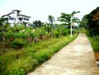 43 Perch Land for Sale in Bandaragama