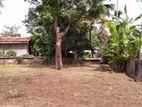 24 perch Land in Kalutara Facing Old Road