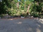 Land for Sale at - Dambulla