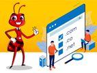 Mobile Friendly Web Design & Development