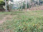 25 Pearch Residence Land for Sale Aturugiriya