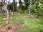 45P Land for Sale in Mahara, Kadawatha