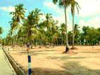 Land For Sale In Negombo Katana Lot 108