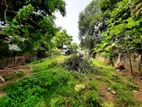 11P Residential Bare Land For Sale in Nawala