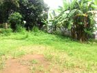 Bare Land for Sale in Battaramulla