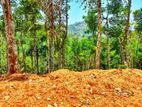 Residential Land Plots in Kandy