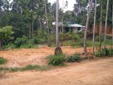 Land for Sale - Kuruwita