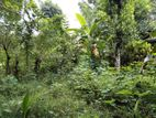 Land with a house for sale in Matale - Mahawela