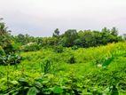 320 P Bare Land for Sale in Godagama
