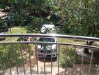 Luxury Valuable House for Sale in Kadawatha