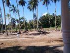 Land for Sale - Delgoda
