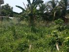 Land For Sale Veyangoda Naiwala