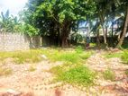 15 P Bare Land Sale at Ratmalana