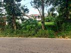 11.7P Bare Land For Sale in Thalawathugoda