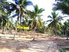 Kurunegala Land for Sale