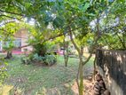 25 P & Property Sale At Pamunuwa Main Road Maharagama