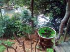 Nature Resort for Sale Kandy