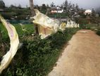 20 Parch Land in Nuwara Eliya