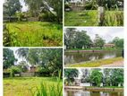 10 P Bare Land Sale at Nawala
